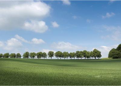 Landschaften LK Hildesheim – Wolfgang Bussler